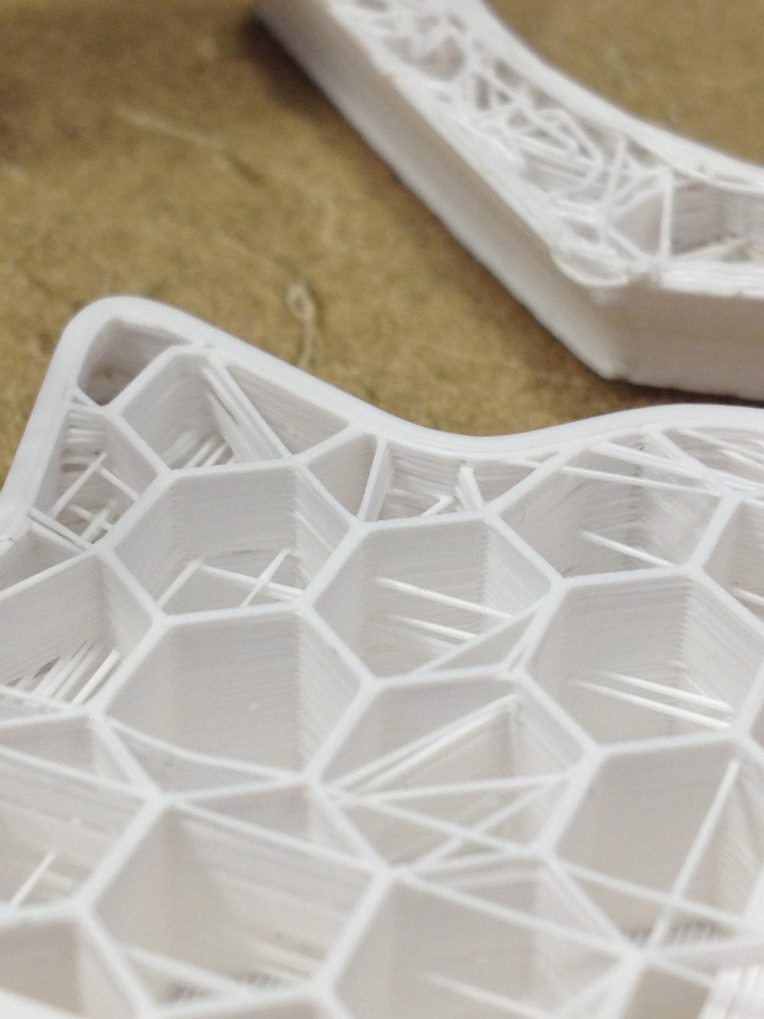 Inner detail of a failed teacup dragon print.